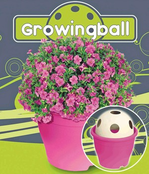 Growingball 'Pink'