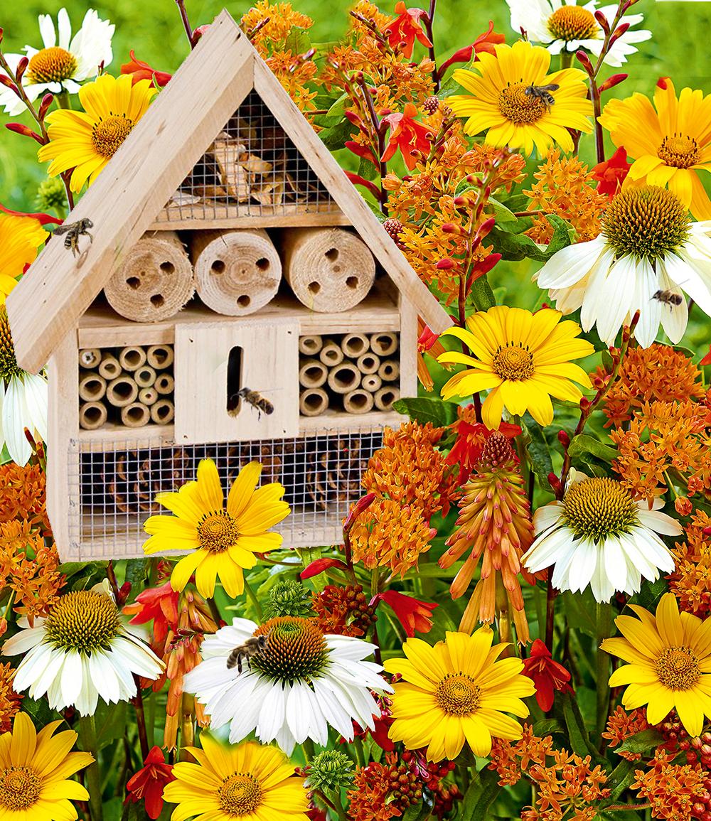 15er Bienen-Pflanzenmix mit Insektenhaus