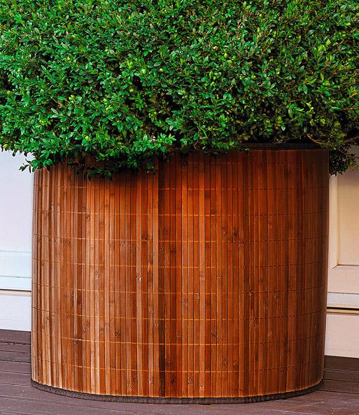 bambusdeko frostschutzmanschette winterschutz bei. Black Bedroom Furniture Sets. Home Design Ideas