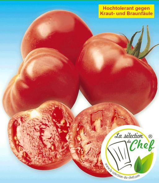 veredelte stab tomate 39 maestria 39 f1 tomaten bei baldur garten. Black Bedroom Furniture Sets. Home Design Ideas