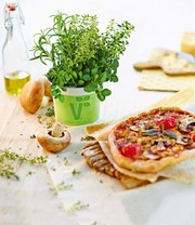 Kräuter-Trio 'Pizza-Mix'