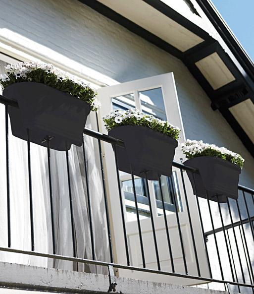 corsica flower bridge anthrazit 60 cm lang baldur garten. Black Bedroom Furniture Sets. Home Design Ideas