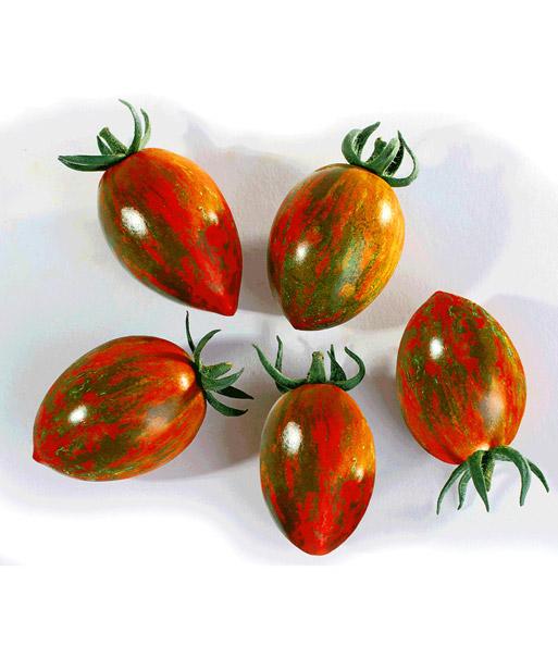 snack tomate 39 tiger red 39 snackgem se bei baldur garten. Black Bedroom Furniture Sets. Home Design Ideas
