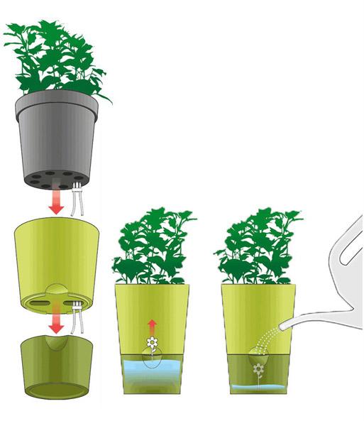 emsa trio kr utertopf fresh herbs wei baldur garten. Black Bedroom Furniture Sets. Home Design Ideas