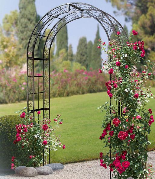 rosenbogen jamarie jetzt online kaufen baldur garten. Black Bedroom Furniture Sets. Home Design Ideas