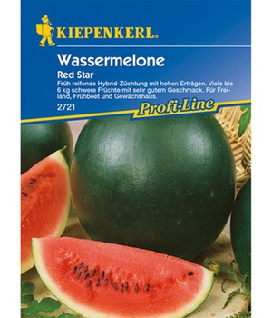 Wassermelone 'Red Star' F1