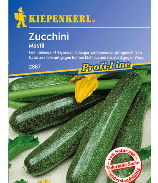zucchini 39 mastil 39 zucchini samen bei baldur garten. Black Bedroom Furniture Sets. Home Design Ideas
